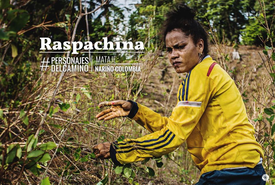 Raspachina